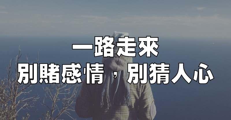 一路走來,別賭感情,別猜人心